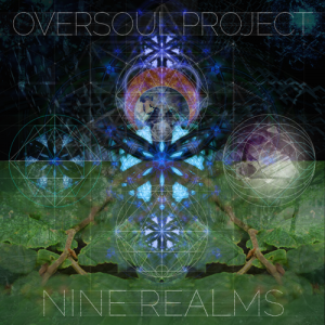 OverSoul Project 9 Realms